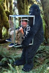 Gorillalille